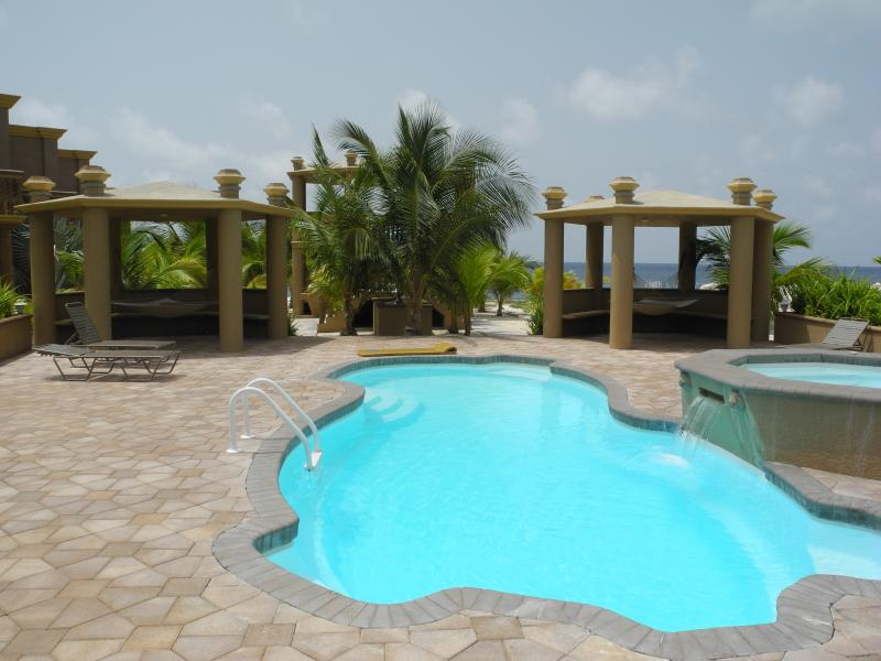 Swimming pool, jetted hot tub, hammocks, BBQs, lounge chairs ~ all just waiting for you to relax.