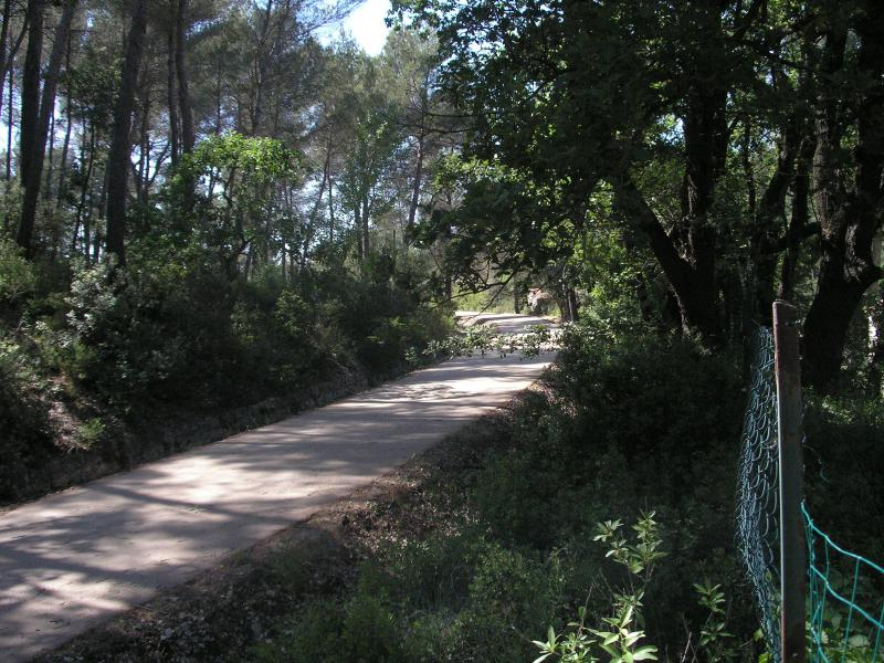 piste cyclable, rollers,