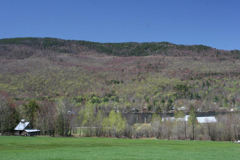 Spring overlooking Mt Elmore