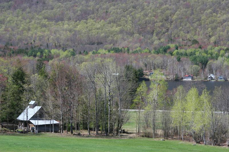 Early Spring overlooking Sugarhouse