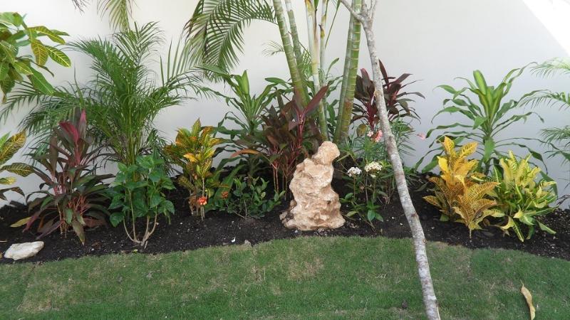 Lush Gardens