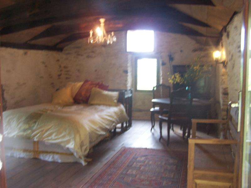 Cottage in tranquile bliss, holiday rental in Saint-Michel-de-Deze
