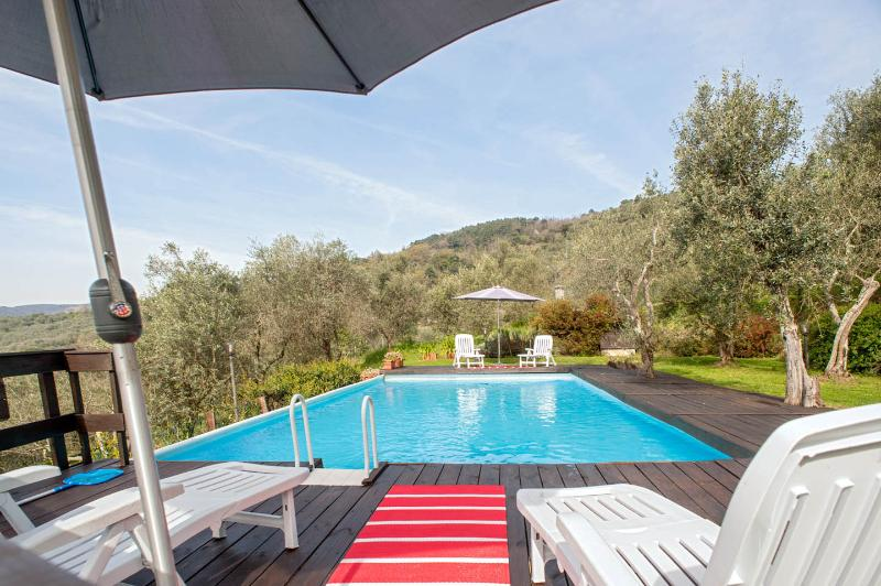 Charming villa surrounded by olive groves, holiday rental in Lucca