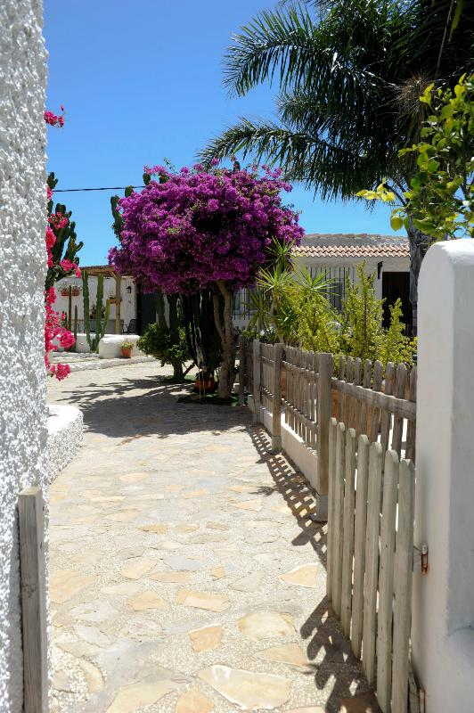 Welcome to Cortijo Flamingos!