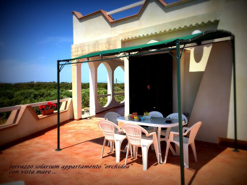terrazzo solarium  arredato con ingresso all'appartamento