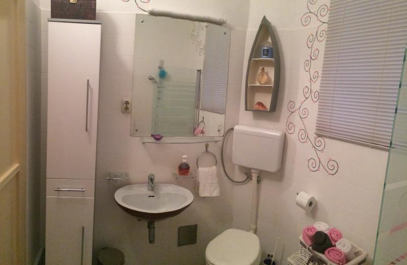La salle de bain avec douche, libre shampooing, savon, sèche-cheveux et autres équipements nécessaires...