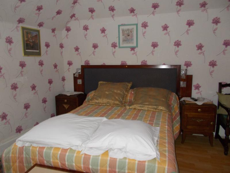 CENTRAL HOTEL, holiday rental in Bains-les-Bains