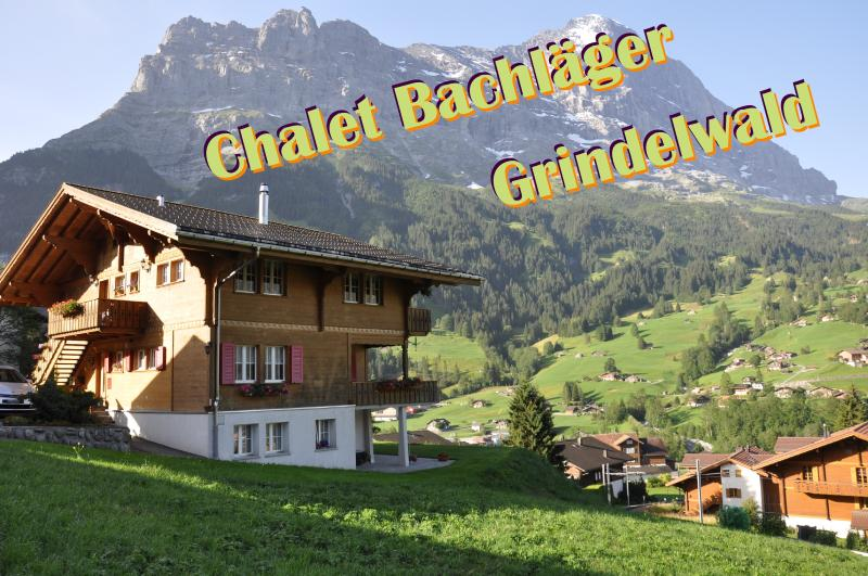 Chalet Bachläger, holiday rental in Jungfrau Region