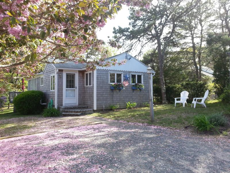 Classic, Quiet,  Private Dennisport Cottage, location de vacances à Dennis