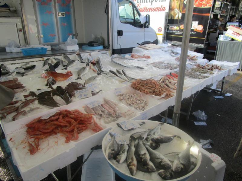 Sunday fish market in Fondi