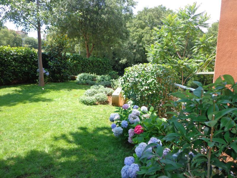 Internal garden of CASA MAR