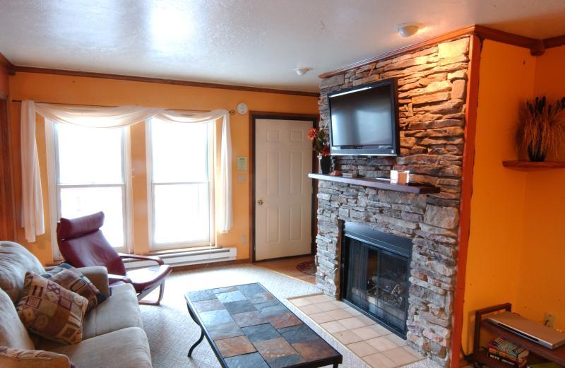 Lichte woonkamer met gashaard, LCD-muur monted TV en queen sofabed