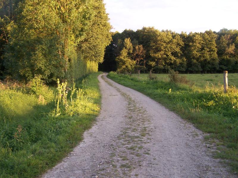 Walking in Melay