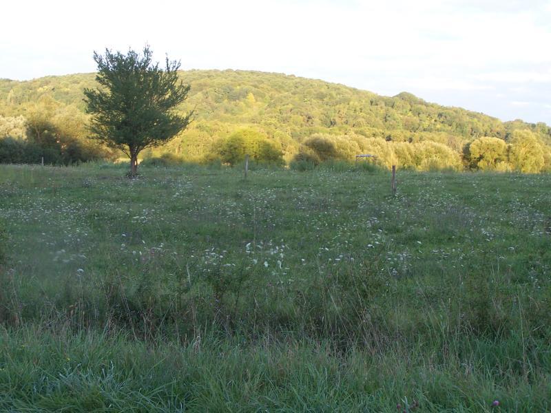 near Melay
