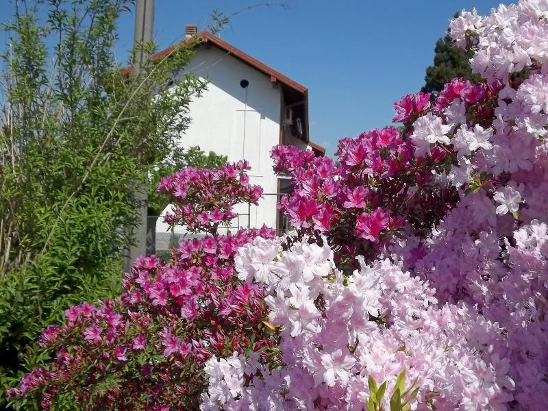 Bed and Breakfast dei Laghi-the garden