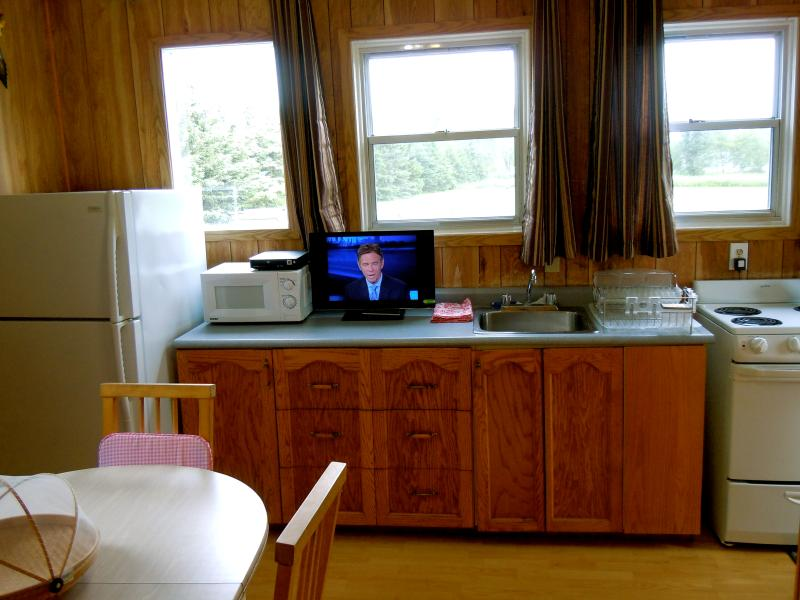 Cottage 10 - 1 bedroom with 2 queen size beds, Kitchenette, eating area, great view of Iroquois Lock