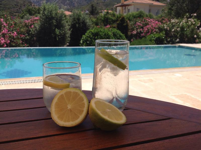 Afternoon drinks with lemons from the trees in the gardens. Also try the almonds, olives and Bananas