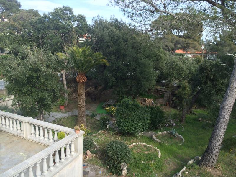 Bird's eye view on the garden
