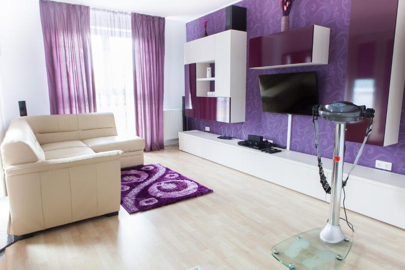 Penthouse Ambiance, vacation rental in Brasov