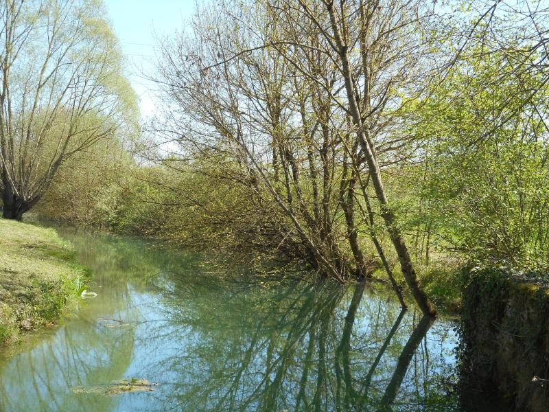Vistas al hermoso río de la propiedad