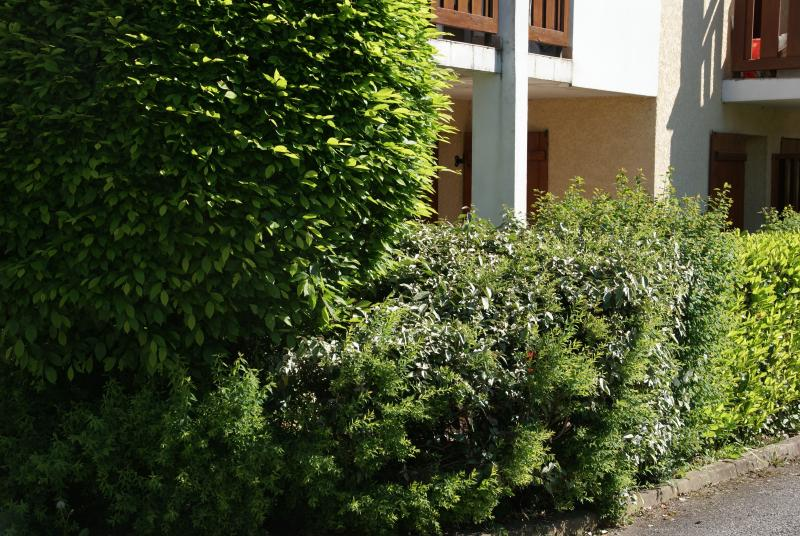 Joli appartement / lac d'Annecy - Saint-Jorioz, holiday rental in Saint-Jorioz
