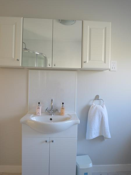 Newly refurbished bathroom with storage facilities above sink