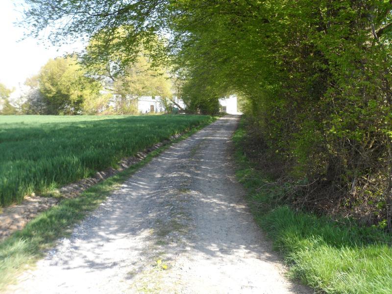 chemin d'accès au gite