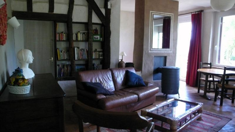 le salon bibliothèque et le poele à bois