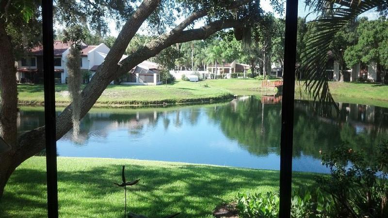 Tarpon Woods Condo with Lake View, alquiler vacacional en Palm Harbor