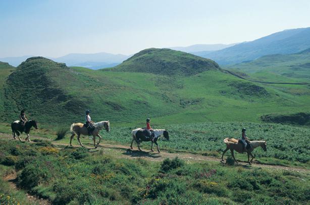 Views of the Mawddach Estuary & Cader Idris off a horse's back
