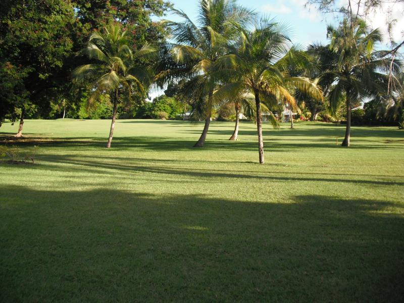 View from the patio, golf course