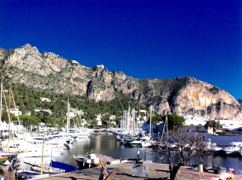 Beaulieu s/ Mer - large sea view flat for 3 people, vacation rental in Monaco-Ville