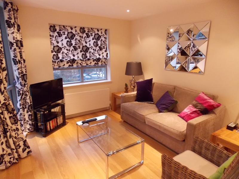 Lounge with flat screen TV, Virgin freeview channels, DVD player and free Wifi.