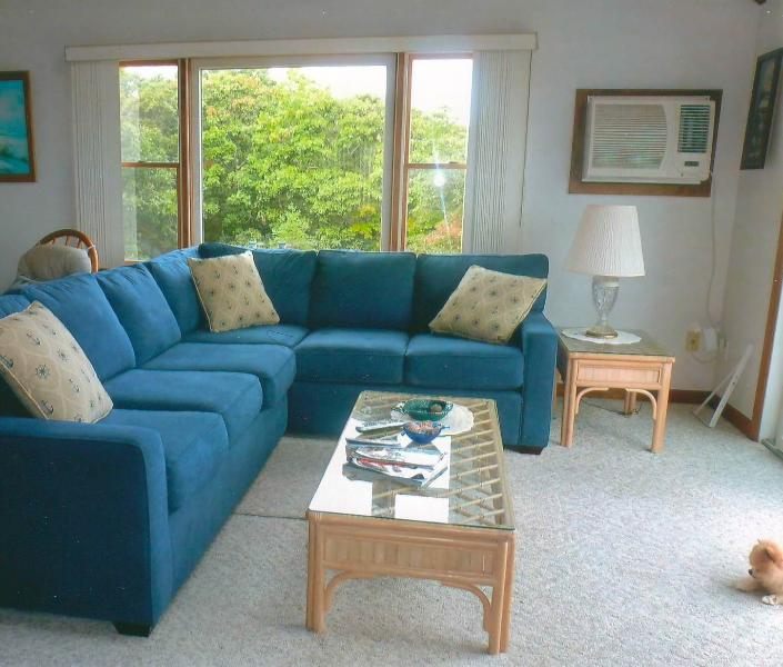 Living Room (New Couch 2015)