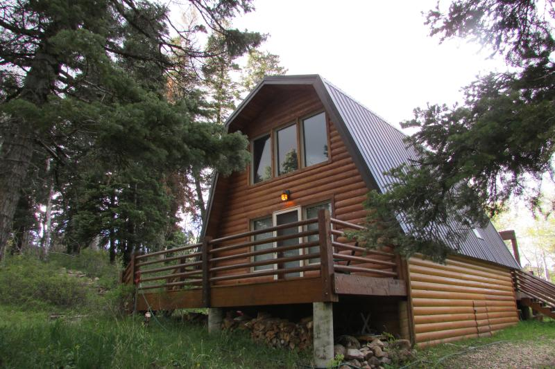 cozy cabin minutes from Park City in the woods Chalet in Park City