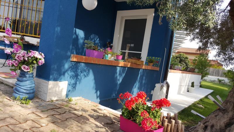 vialetto di ingresso con giardino