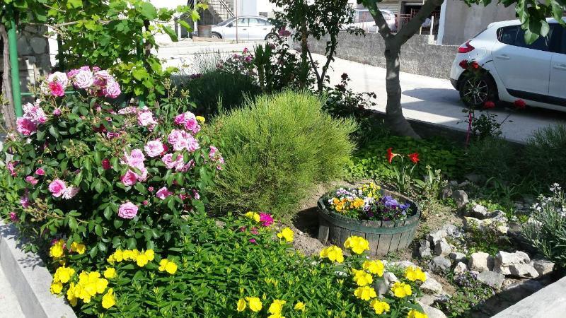 garden - picture 3