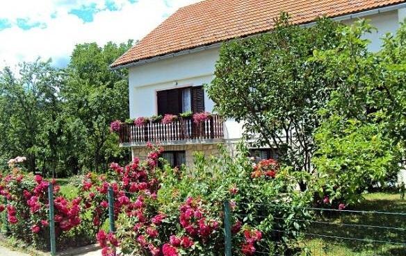 APARTMENT IVONA, location de vacances à Dreznicko Seliste