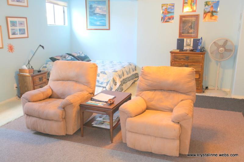 Comfortable swivel recliners