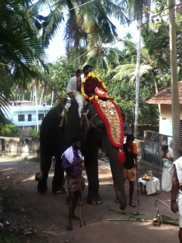 Local temple procession outside of house
