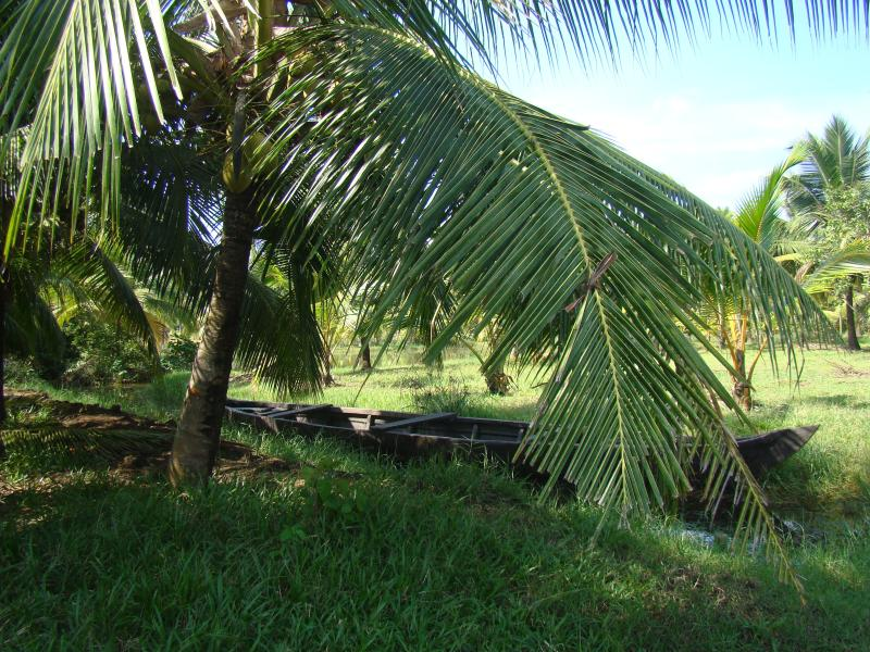 Kochumangalathu, vacation rental in Kollam