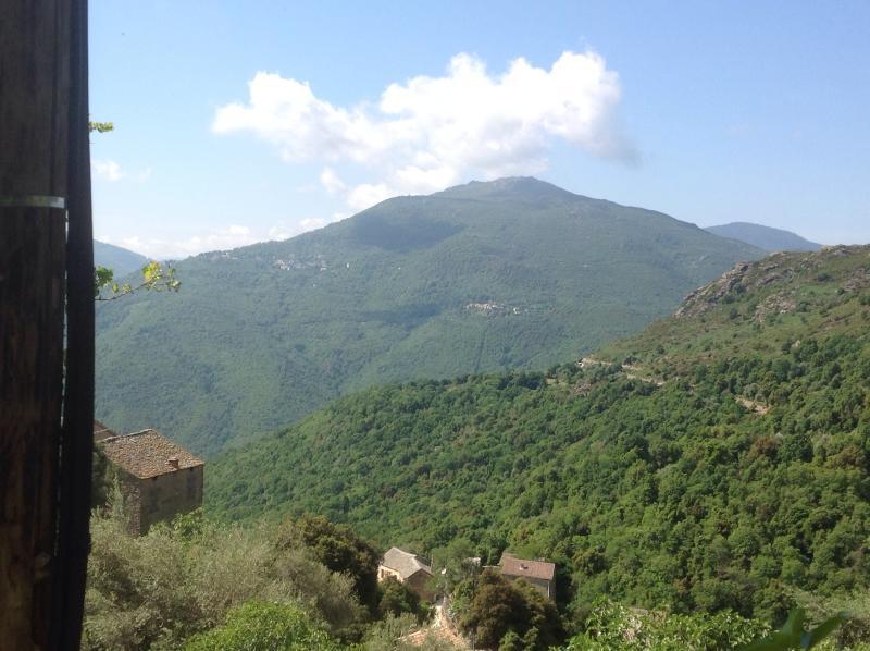 Chambre d'hôtes corse a VOLPAJOLA haute corse, aluguéis de temporada em Valle-di-Rostino
