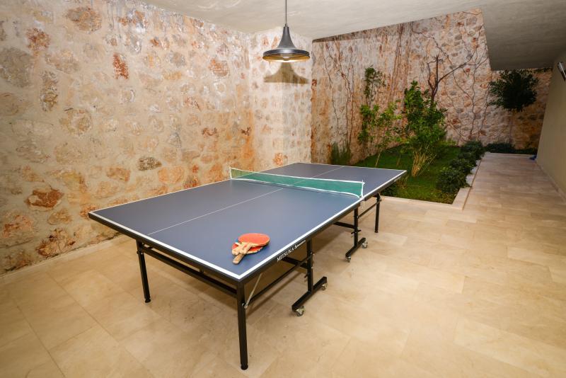 Let the games begin,table tennis or pool