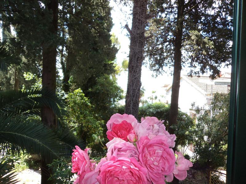vista del giardino da balcone