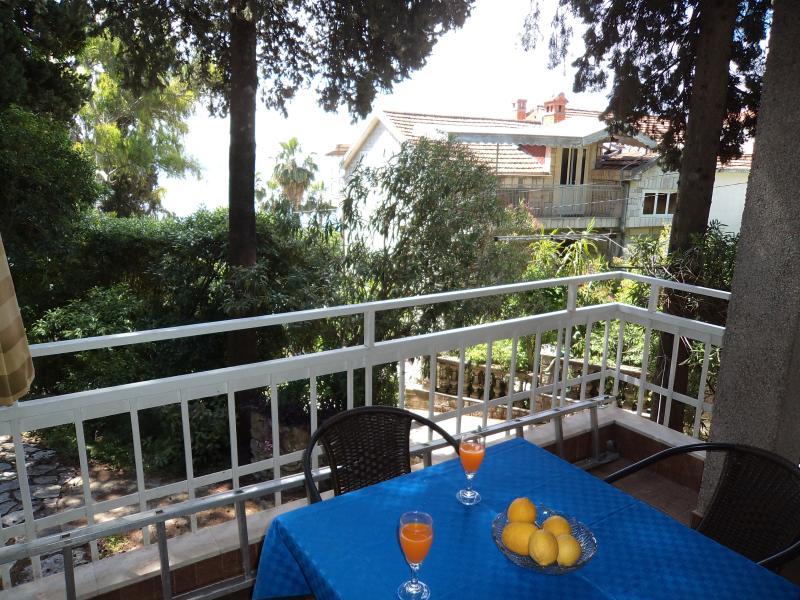 vista mare dal balcone e giardino