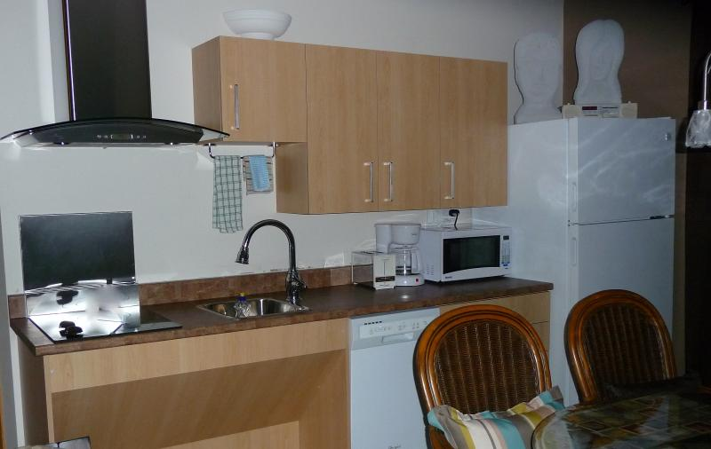 Full kitchen, fridge, plate cooktop, dishwasher, coffee maker, microwave, Toaster,