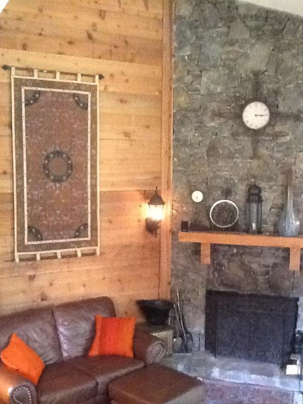 Grande salle de séjour ! canapés en cuir confortables, 60' TV, livres, musique, plancher en bois, décor sympa !
