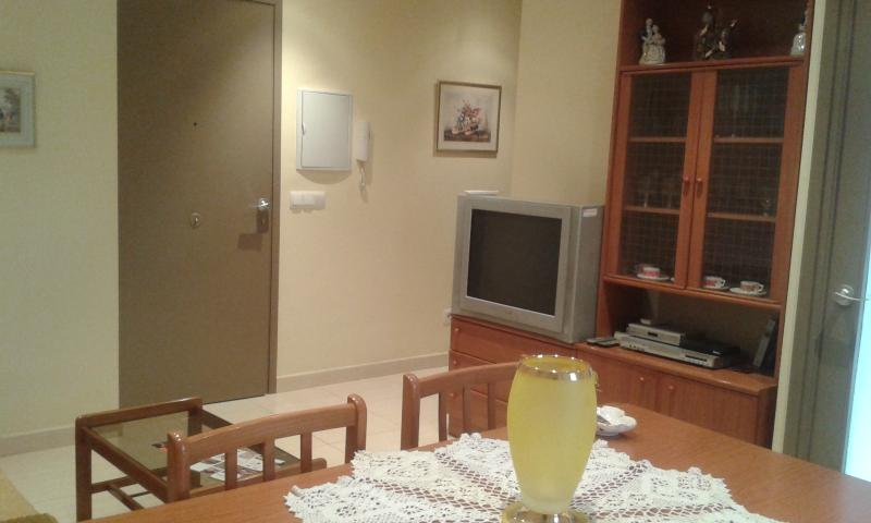CAL BENET DE MANIGUES piso 2 en Camarasa, holiday rental in Camarasa
