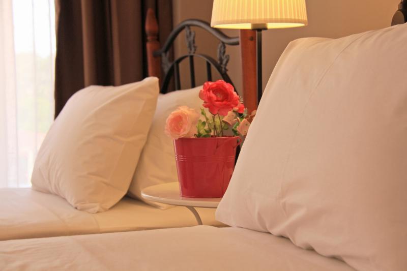 Comfort Room, holiday rental in Sarigerme