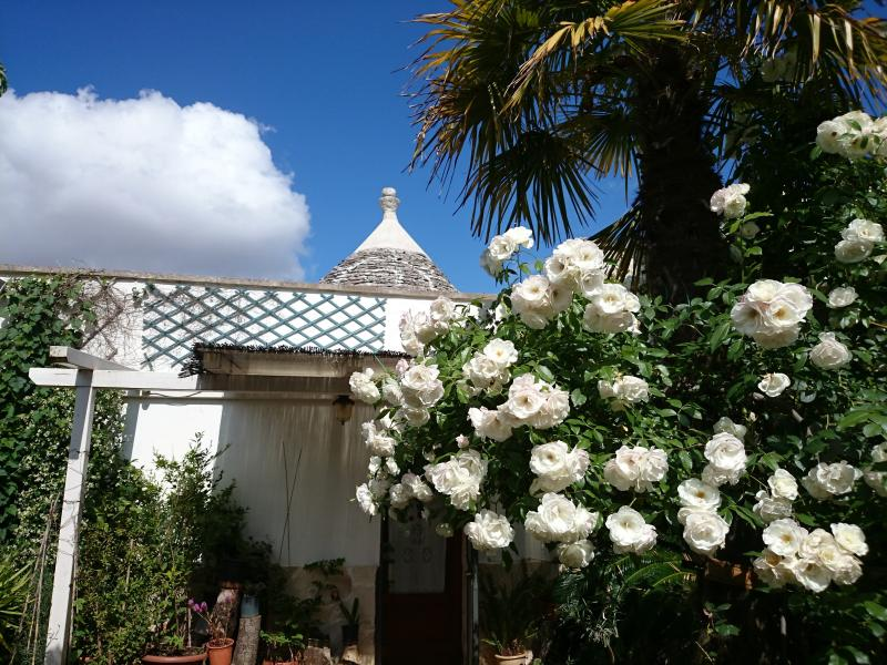 Trullo Casa Rosa & Apart.Mimosa, vacation rental in Coreggia